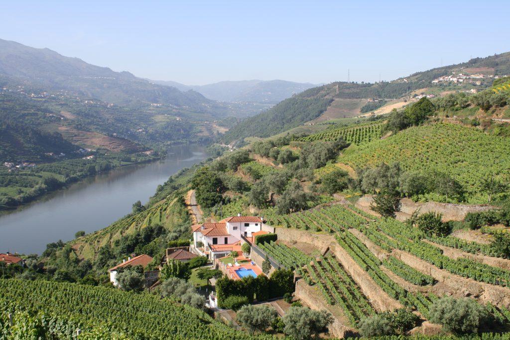La vallée du Douro et le vignoble de Porto