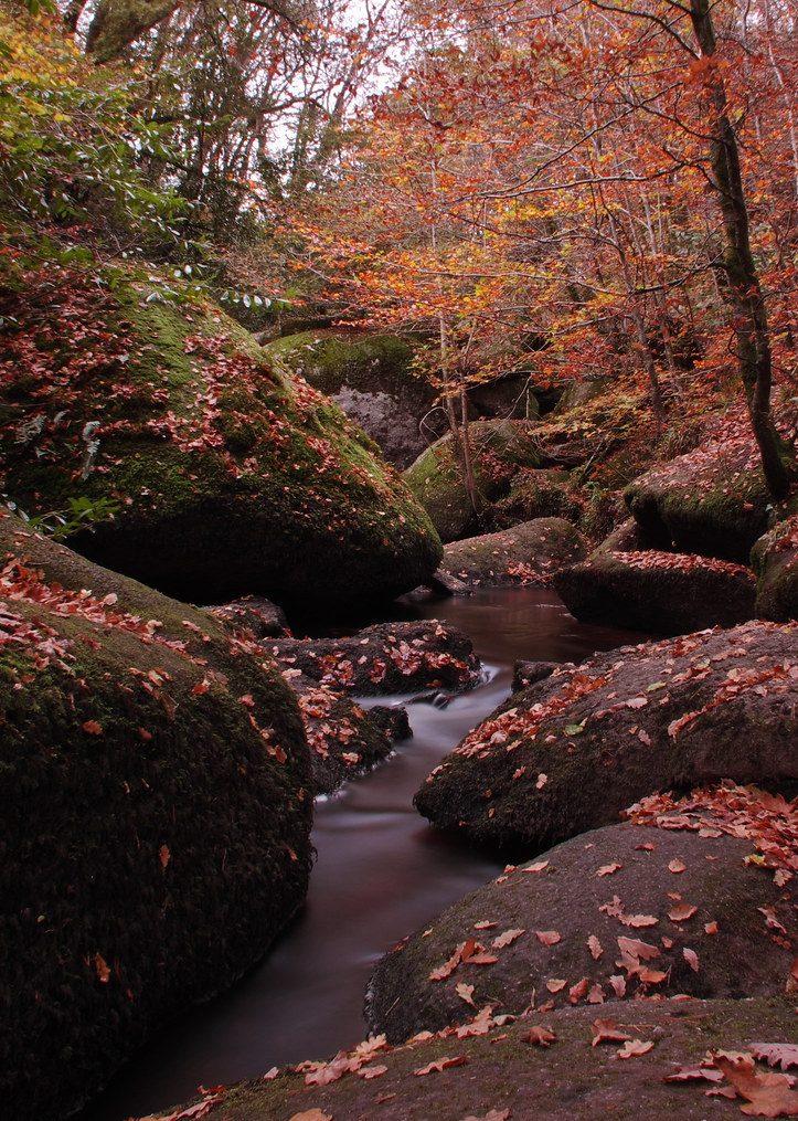 Forêt de Huelgoat avec ses rochers ronds