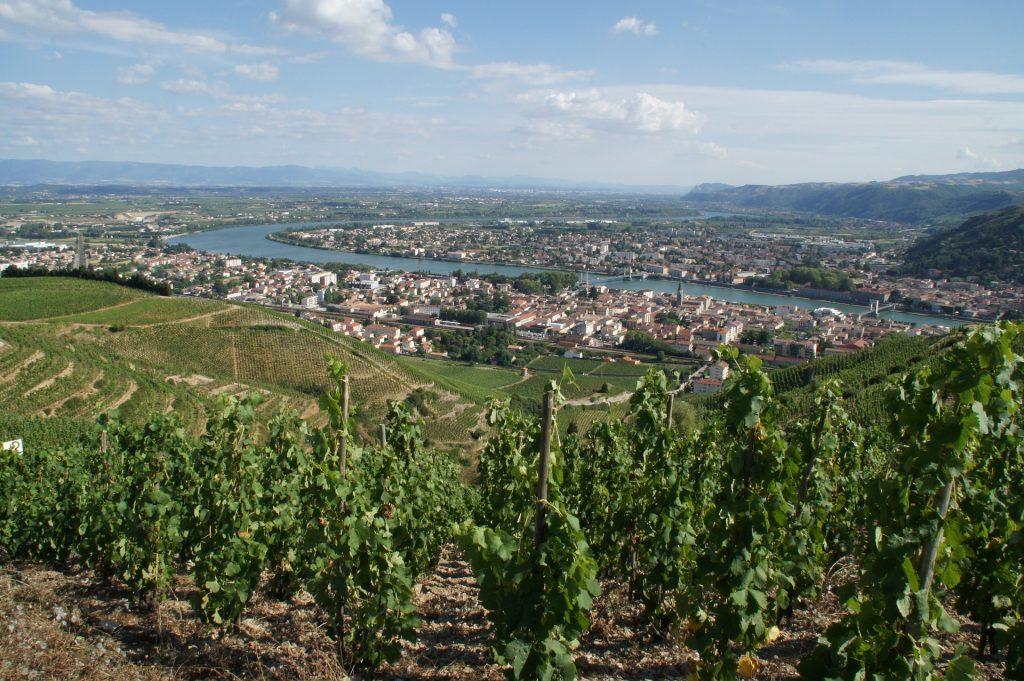 La Drôme en camping-car : la ville et le vignoble de Tain L'Hermitage